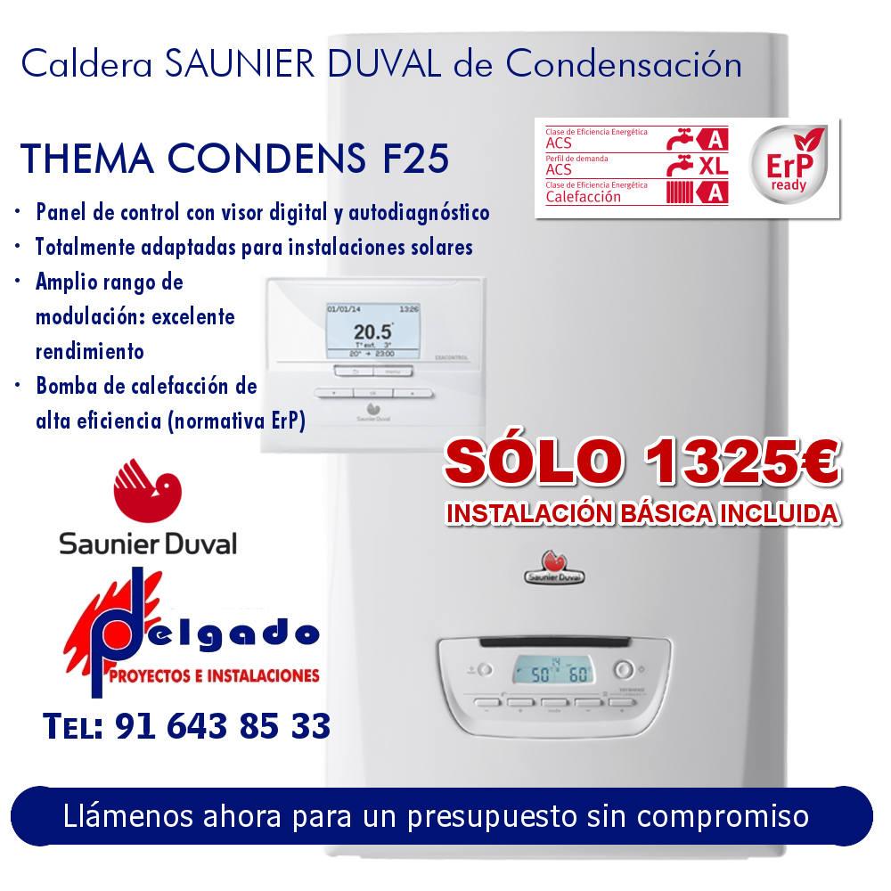 OFERTA Caldera de condensación SAUNIER THEMA CONDENS F25